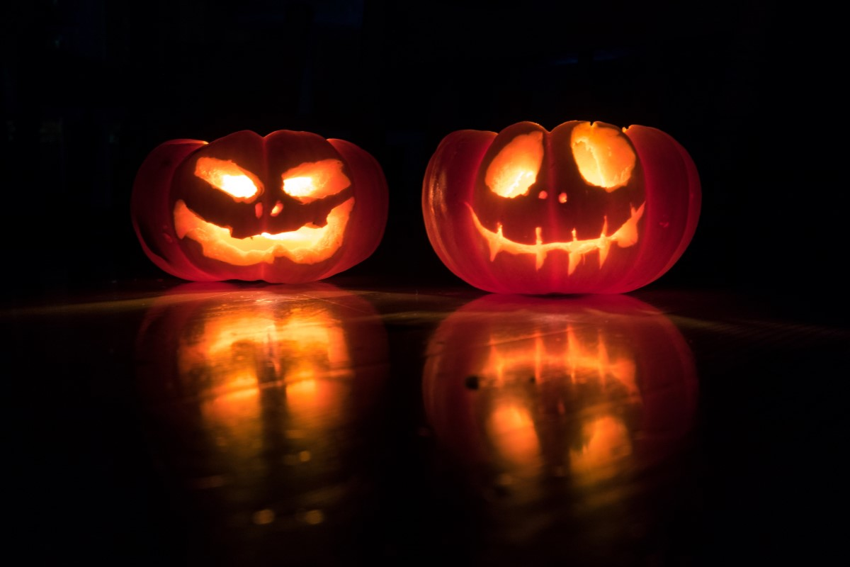 A Teen's Halloween Memoir Captures the Holiday's Images